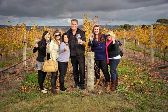 McLaren Vale Winery Small Group Tour with Wine Tasting and Lunch