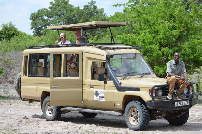 Mikumi National Park From Zanzibar Road Trip 3 Days 2 Nights
