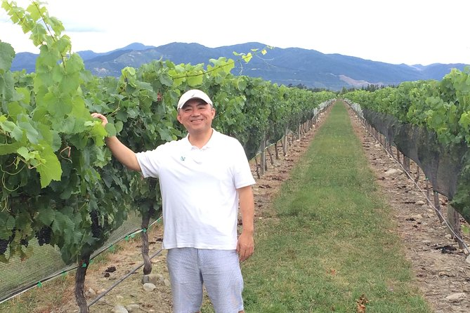 SINGLES SPECIAL: Full Day Wine Gourmet and Scenic Delights from Picton
