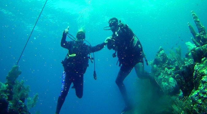 2 Tank Roatan Fun Dive, Boat Sightseeing Tour, including ground transportation