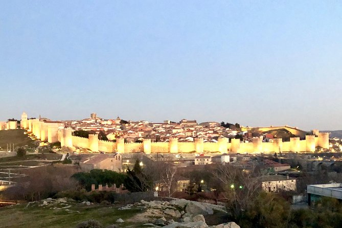 Ávila and Rueda wineries from Madrid Wine tour