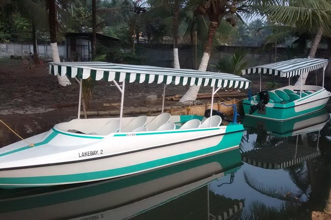 Cochin tuk tuk tours and One hour Backwater Tour with pickup from Cruise ship photo 4