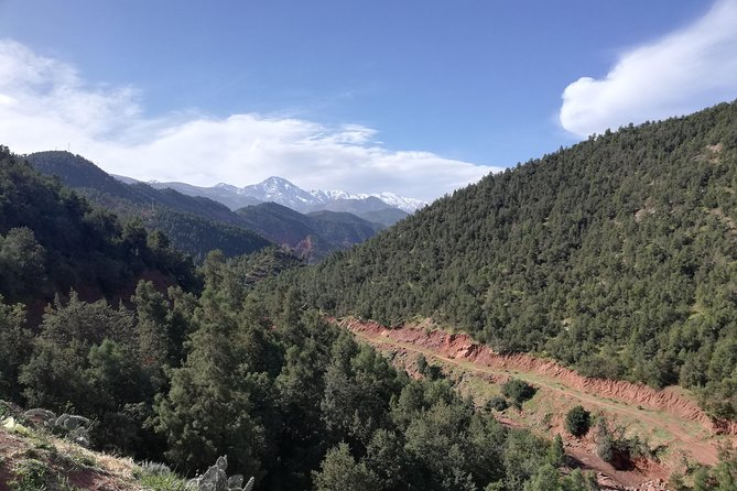 Day Excursion To Ourika Valley and High Atlas From Marrakech: Shared