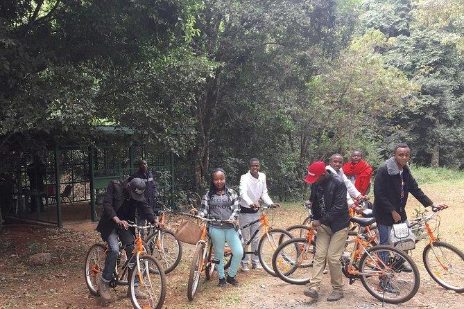Karura Forest Nature Walk and Bike Ride Day Tour from Nairobi