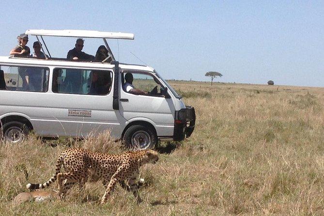 6 Days Samburu Aberdares Lake Nakuru Masai Mara