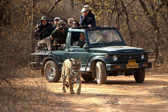 3-Day Private Ranthambhore Tiger Tour Including Delhi, Agra, Jaipur