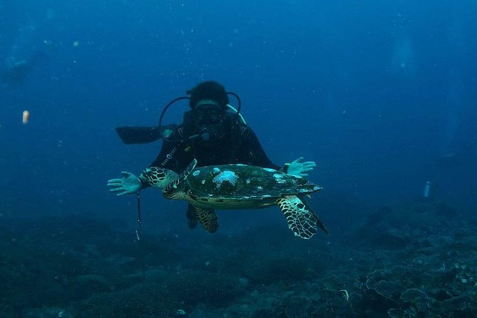 Discover Scuba Dive (No Certified Needed) Trip from Bali to Lembongan and Penida