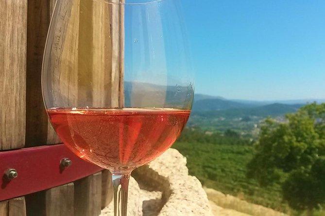Wine Tour & Selection Wine Tasting - Quinta de Santa Cristina Wine Estate