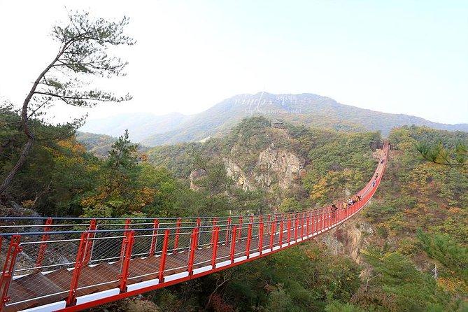 Private DMZ Peace Tour : N.Korea 3rd Invasion Tunnel and Suspension Bridge
