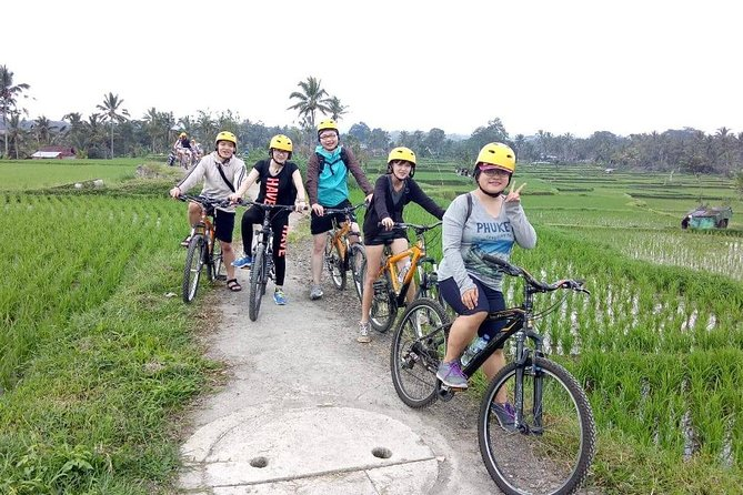 Bali Cycling Tour - Alam Amazing Adventures