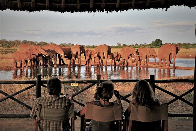 3 days Elephants Paradise Tzavo with Safari-Train ride included
