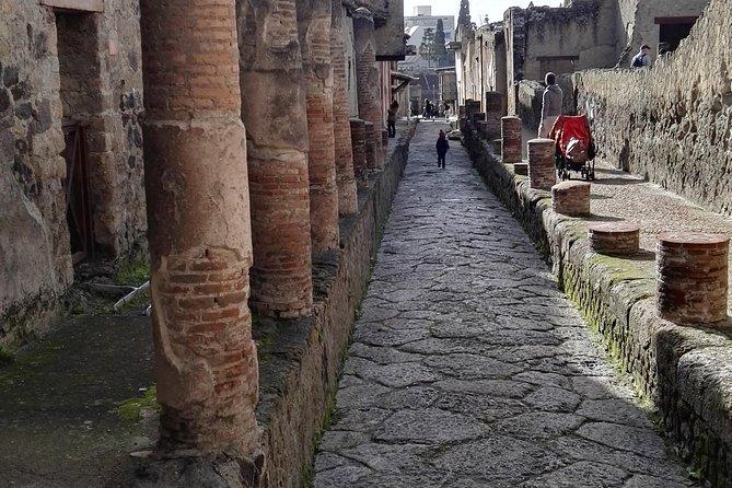 Private Tour Of Herculaneum & Mount Vesuvius