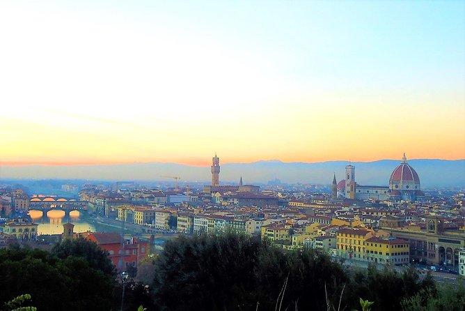 Tour Privato; Firenze & Pisa