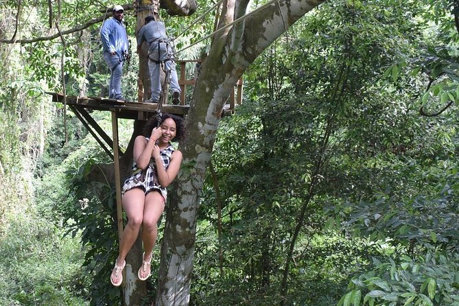 Zipline, Wildlife Park & Beach Jam-Packed Excursion