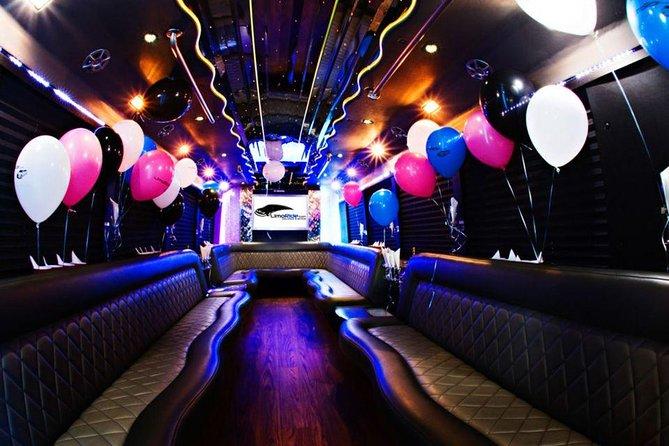 Party Bus & Dancer for 6 hours in Vilnius