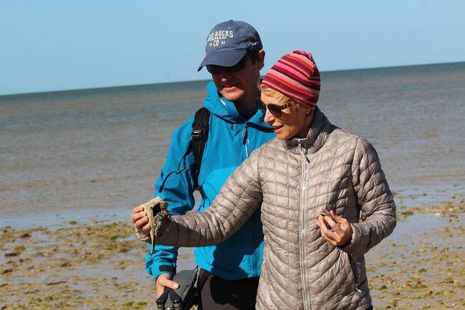 Everglades National Park Expedition