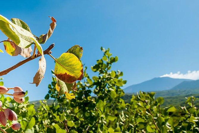 Etna tour and pistachio lunch - Sicily Hiking Tour