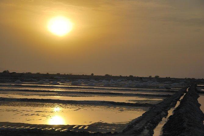 Sambhar lake- Hidden gems of Rajasthan