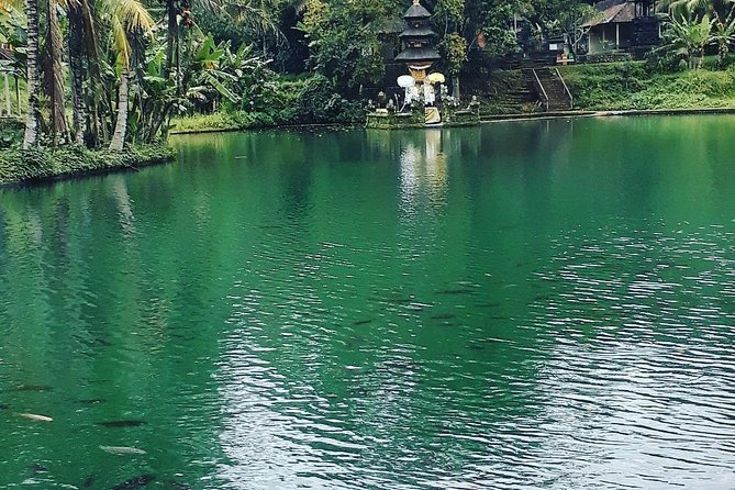 Bali Day Trip Sacred In Hidden Paradise