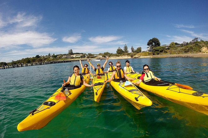 Mornington Peninsula Kayak Coastline Tour von Dolphin Sanctuary