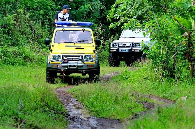 Salak Plantation Tour By Jeep