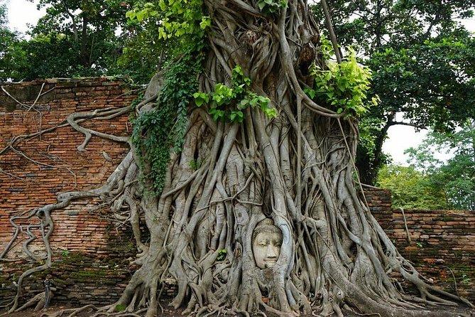 Discover UNESCO World Heritage Sites - Ayutthaya to Khao Yai National Park