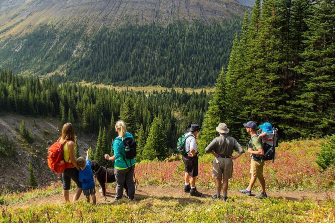 Hike Canada's Highest Pass - Larch Viewing