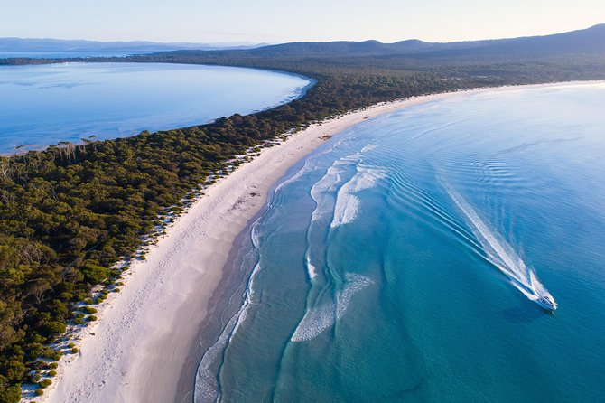 Full-Day Maria Island Scenic Cruise with Lunch and Guided Walk