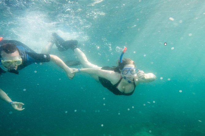 Pula Snorkeling and Kayaking