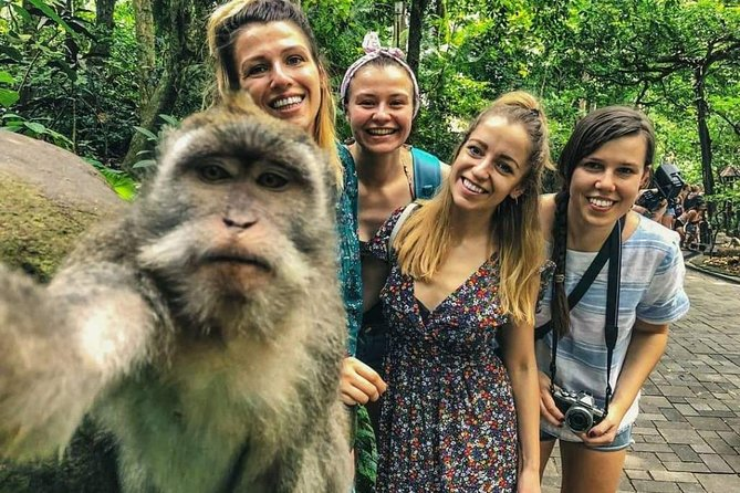 Ultimate Monkey Forest Tour (Private & All-Inclusive)