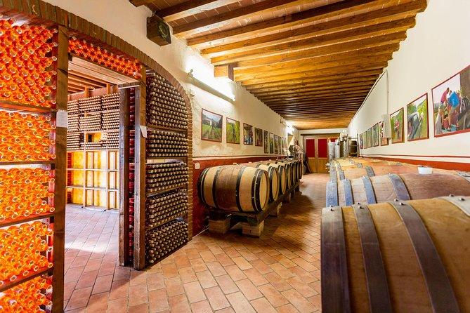 Winery Agriturismo Santo Stefano Castiglion Fiorentino (6 types of wine)