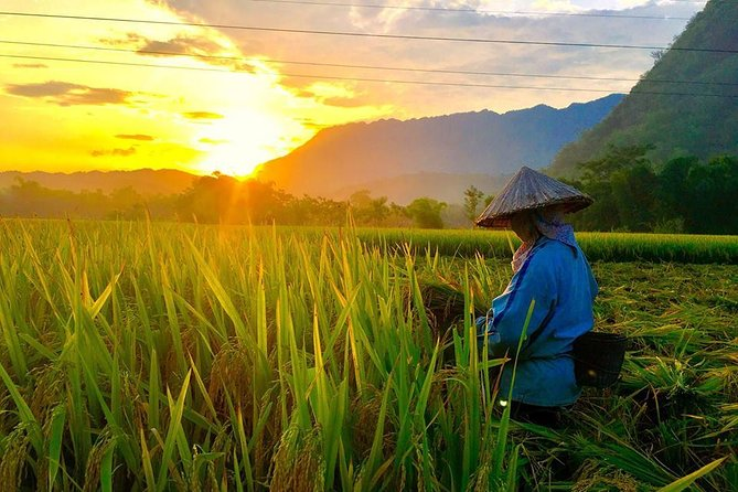 2-day Mai Chau and Pu Luong with round trip transfer from Hanoi