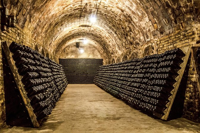 A taste of France's Champagne Region with Mumm: Small-group day trip photo 7