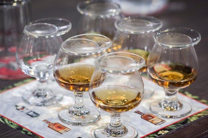 Rum Tasting Tour - Casa BACARDÍ Puerto Rico