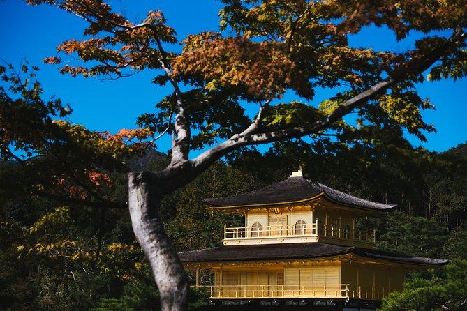 Day Trip by Bus to Kyoto, Nara and Kobe from Osaka/Kyoto