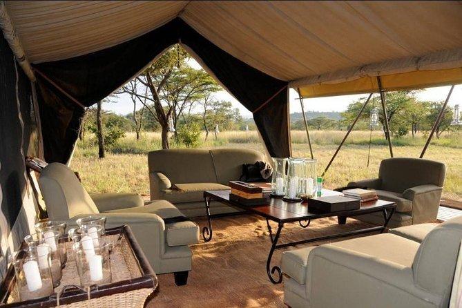 8 Days Tanzania Adventure Tented Camps Safari