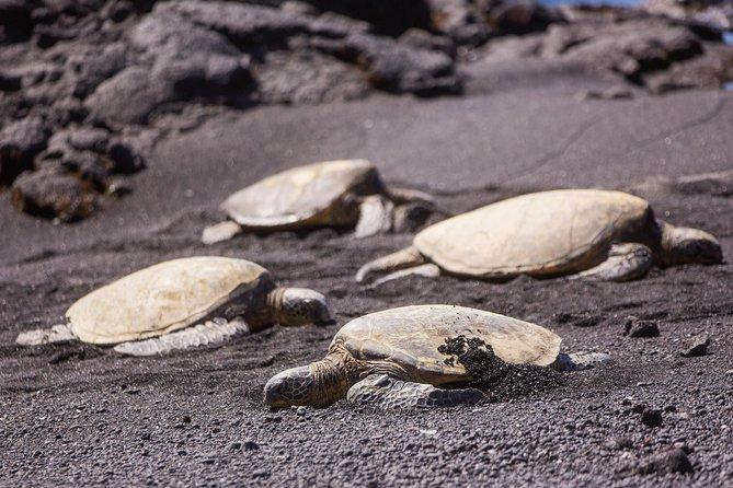 Dagtrip naar het Grote Eiland: Nationaal park Hawaii Volcanoes vanaf Oahu