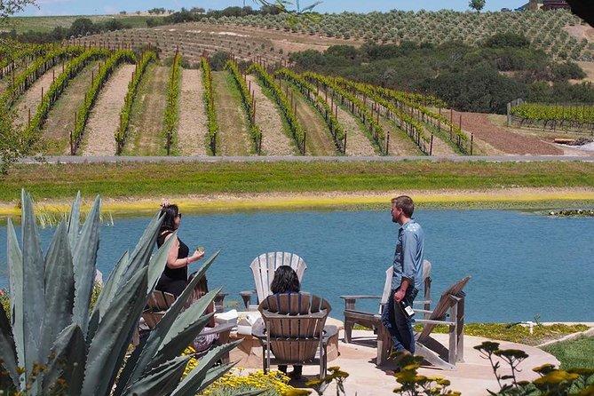 Lodi Area Wine Tours