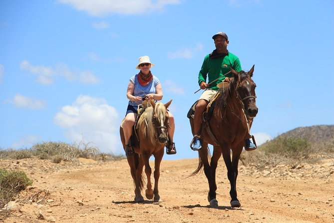 Los Cabos Horseback Riding photo 4