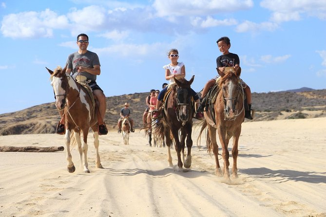 Los Cabos Horseback Riding photo 10