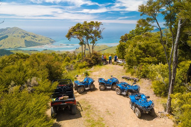 Quad Bike - Bayview Circuit