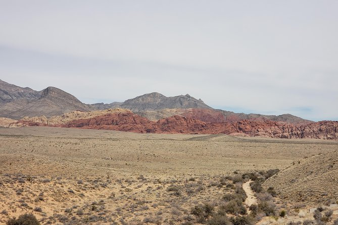 Red Rock Spyder Tour photo 6