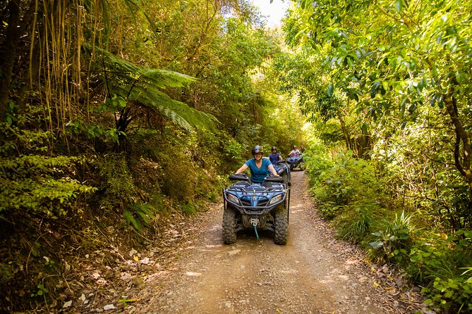 Quad Bike - Farm Forest Ride