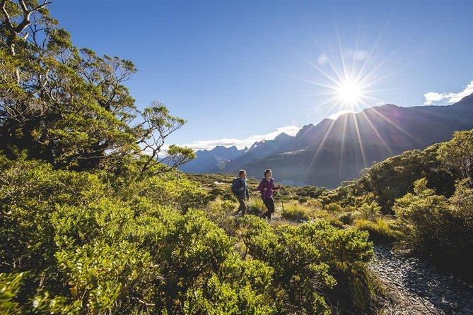 Full-Day Routeburn Track Key Summit Guided Walk from Te Anau