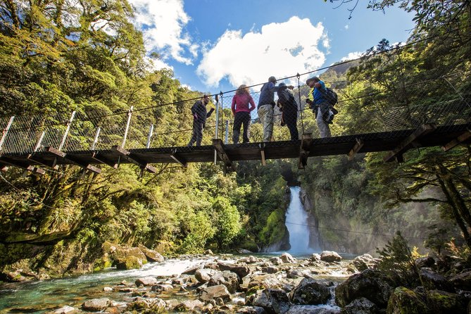 Half-Day Milford Track Guided Hiking Tour