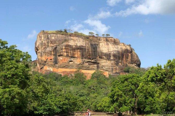 World Heritage Sigiriya and Minneriya National Park From Ella