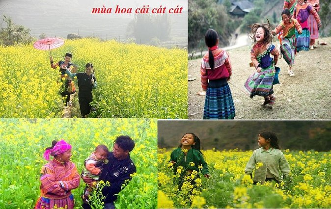 Sapa Tour: Visit Cat Cat, Lao Chai Ta Van and transfer by Bus photo 1