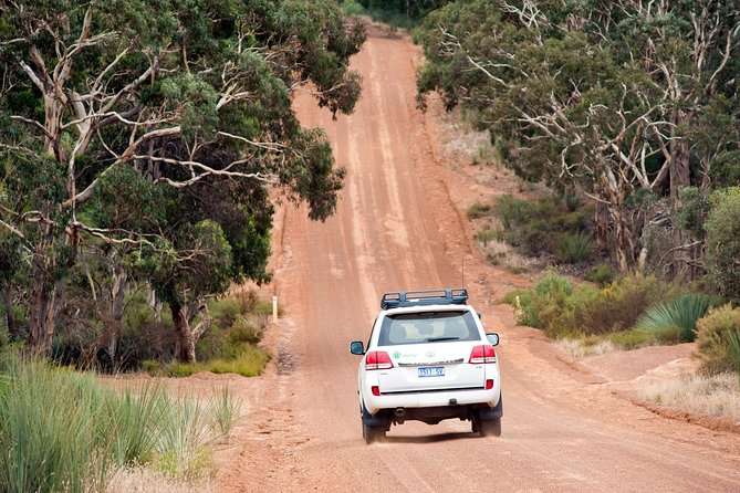 Small-Group Kangaroo Island 4WD Tour from Adelaide photo 7