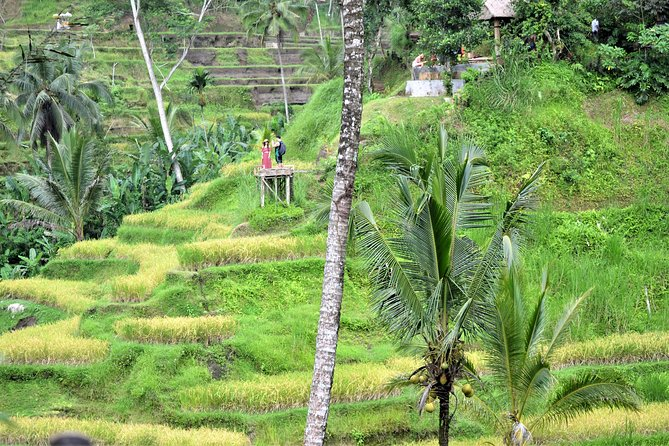 Private Sighseeing Tour: Ubud Village And Tegenungan waterfall