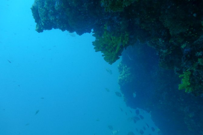 Pula Boat Trip with Snorkeling